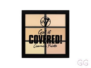Got It Covered! Conealer Palette