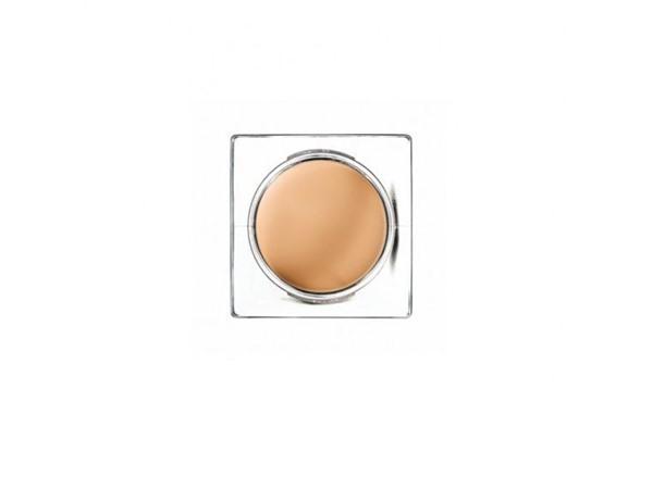 Mii Cosmetica Complete Cream Concealer