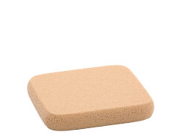 Sponge For Mine De Rien