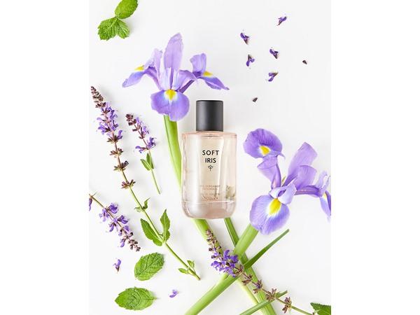 Discover Soft Iris Eau De Toilette