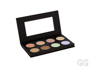 Collection  Conceal And Light Like A Pro Palette